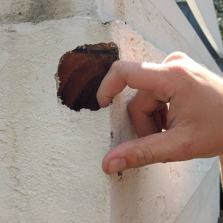 bat stucco damage