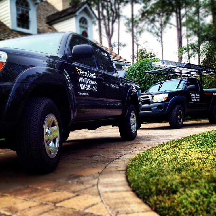 First Coast Wildlife Services Team